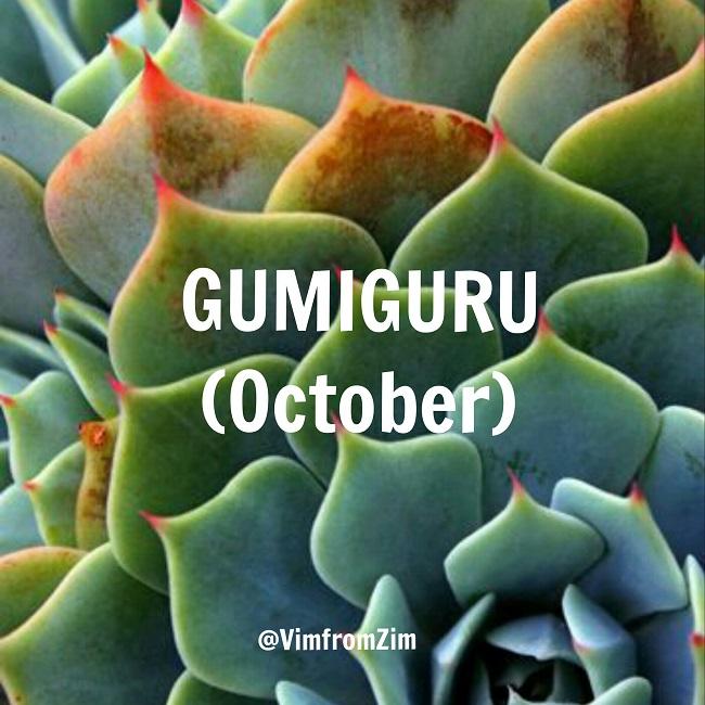 Gumiguru - VimfromZim