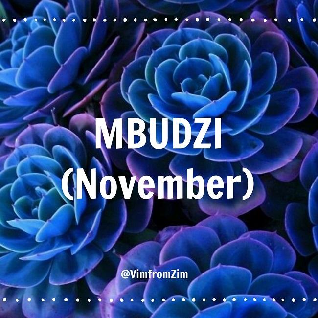 Mbudzi - November